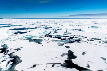 Ice landcape on the water in Arctic