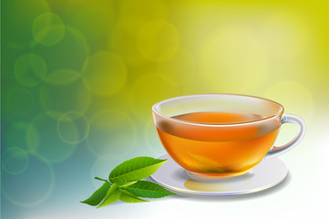 Black tea and green tea cup brochure, banner,  leaves vector.