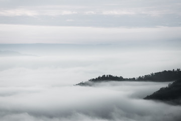 sea of clouds over the forest, Black and white tones in minimalist photography