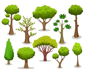 Tree collection. Cartoon natural trees clipart isolated on white background for naturally vector illustrations