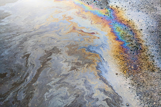 Rainbow colors from an oily sheen on water