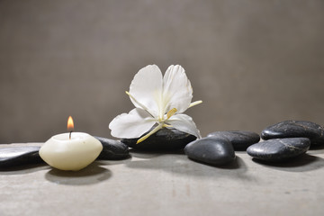 candle with pile of black stones and white orchid, on gray background