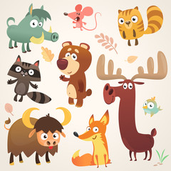 Cartoon forest animal characters. Vector illustration. Big set of cartoon forest animals illustration. Squirrel, mouse, raccoon, boar, fox, buffalo, bear, moose, bird. Isolated