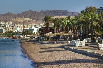 palms embankment and beach in Eilat Israel red sea
