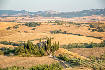 Wall Mural - Beautiful typical countryside summer landscape in Tuscany, Italy