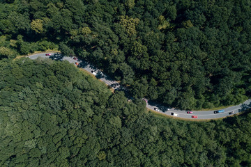 Luftbild einer durch einen Wald verlaufenden Strasse