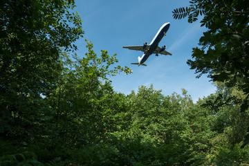 Flugzeug fliegt über einem Wald