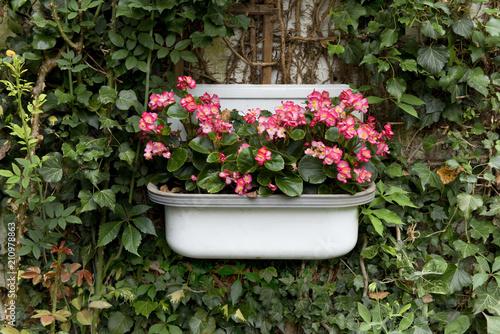 Stuhl zum bepflanzen antiker stuhl mit shabby chic with - Bepflanzter stuhl ...
