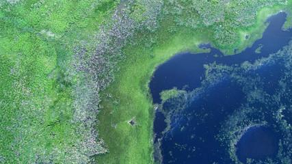 Aerial landscape - lake shoreline