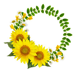 Sunflowers, daisies and acacia flowers and green leaves in a round frame