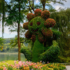 Decorated park on the Lake Constance (Bodensee) on the Rhine at the  foot of the Alps