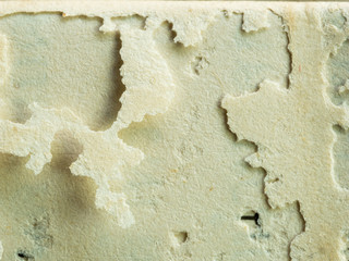 Texture of Old Paper Decay