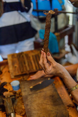 Cuban cigars manufacturing rolling process