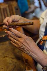 Cuban cigars manufacturing rolling process