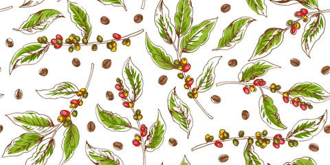 Botanical seamless pattern with coffee branches and beans