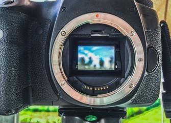 landscape in camera mirror