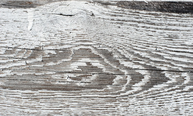 Grunge vintage texture old cracked painted white wooden planks