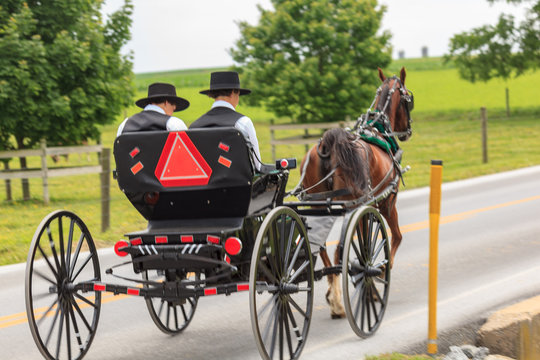 Two Youbng Amish Men in an Open Buggy
