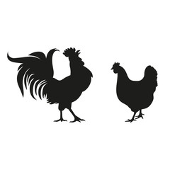 silhouette of a cock and a chicken on a white background