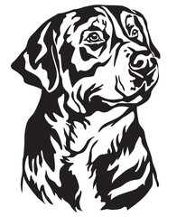 Decorative portrait of Greater Swiss Mountain Dog vector illustration