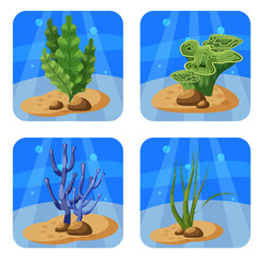 Set of colorful corals and algae on a blue background. Natural underwater vector illustration. Cartoon style, isolated
