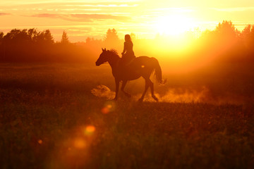 Horse and girl, silhouette on red colorful sunset. Sunny cowboy riding on galloping horse. Beautiful art background with horseback