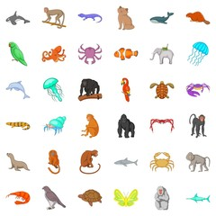 Wildlife icons set. Cartoon style of 36 wildlife vector icons for web isolated on white background