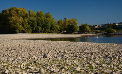 Dry riverbed on a nice autumn day with visible trees. River Rhine in Germany.