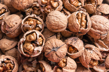 closeup of organic Persian walnuts in cracked shells