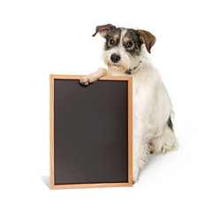 Wall Mural - Saggy Terrier Dog Holding Blank Chalkboard Sign