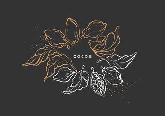 Vector graphic wreath of cocoa tree, branch