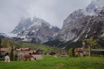 Little village next to Eiger mountain