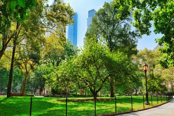 Madison Square Park on 5th Avenue. Urban views of New York.