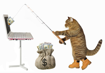 The cat fisher catches dollars from the computer with a fishing rod. White background.