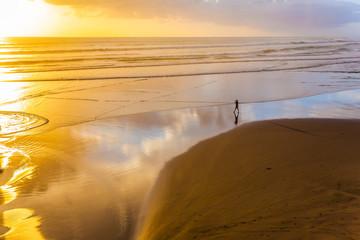 The beach near Auckland