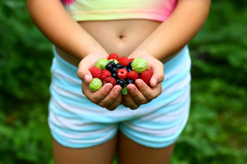 The girl in colored clothes haring fresh various berries of raspberries, gooseberries, currants from the garden