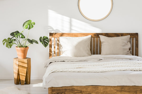 Wooden double bed with white pillows, sheets and knit blanket standing in bright bedroom interior with fresh plant on bedside table and mockup poster on the wall