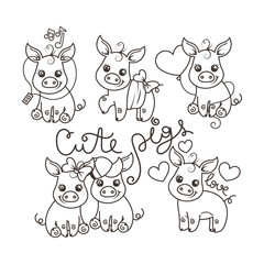 Collection of cute cartoon pigs