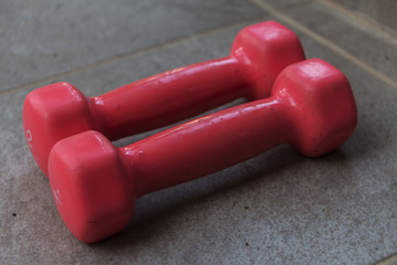 Two pink dumbbells. Healthy lifestyle, sport.