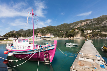 Pink sheep in the harbor