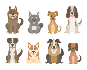 Collection of different kinds of dogs isolated on white background. Cute dogs in cartoon style sitting in front view position. Vector illustration.
