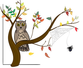 Owl and Spider on an autumn tree