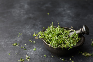 Fresh green thyme herb in cast iron spice grinder or mortar on black stone background, close up view