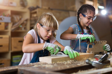 Two young girls doing woodwork in a workshop