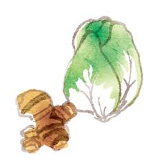 漬物にしたらおいしい野菜シリーズ_白菜&生姜