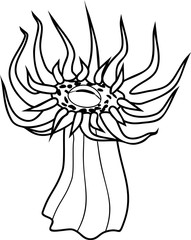 Sea anemone with sharp tentacles  coloring page