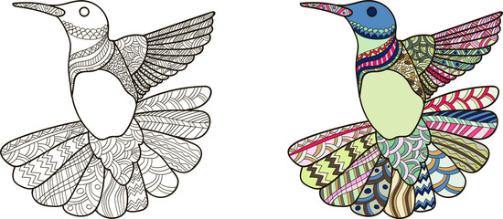 Drawing humming-bird zentangle style for coloring book, tattoo, shirt design, logo, sign. stylized illustration of humming-bird in tangle doodle style. Colorless and color samples for book cover
