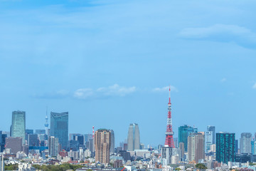 東京 首都 高層ビル群 panoramic view of the capital Tokyo