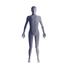 Anatomy of male muscular system. Grey human wireframe hologram, artificial intelligence in futuristic technology concept. 3d illustration