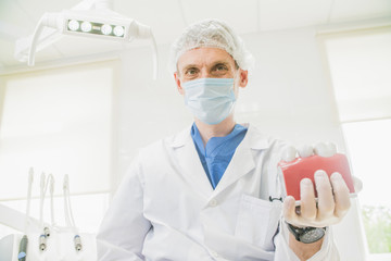 doctor dentist holds in his hand the layout of the teeth